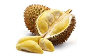 Durian Enak, Durian Sehat, Manfaat Durian