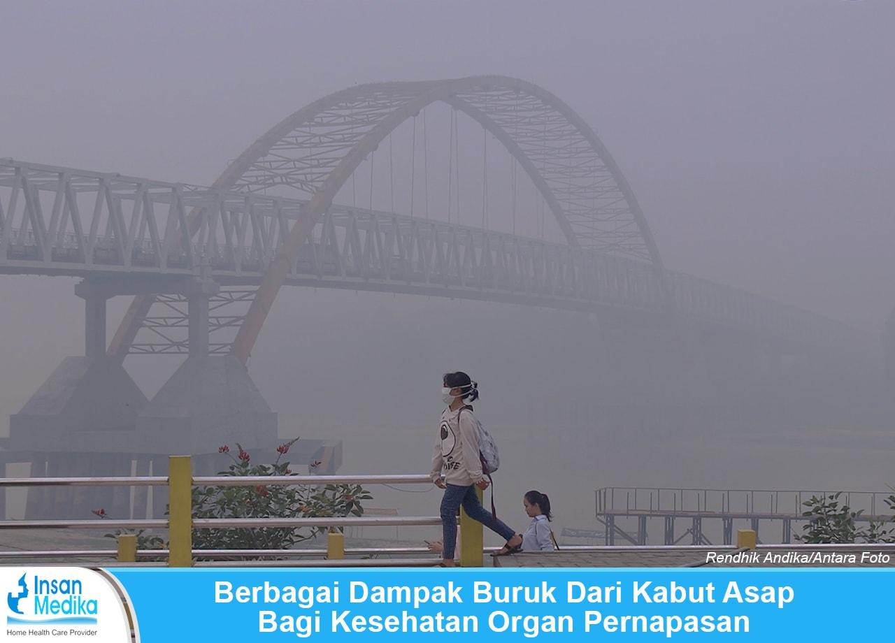 Dampak buruk akibat kabut asap kebakaran bagi kesehatan organ pernapasan manusia
