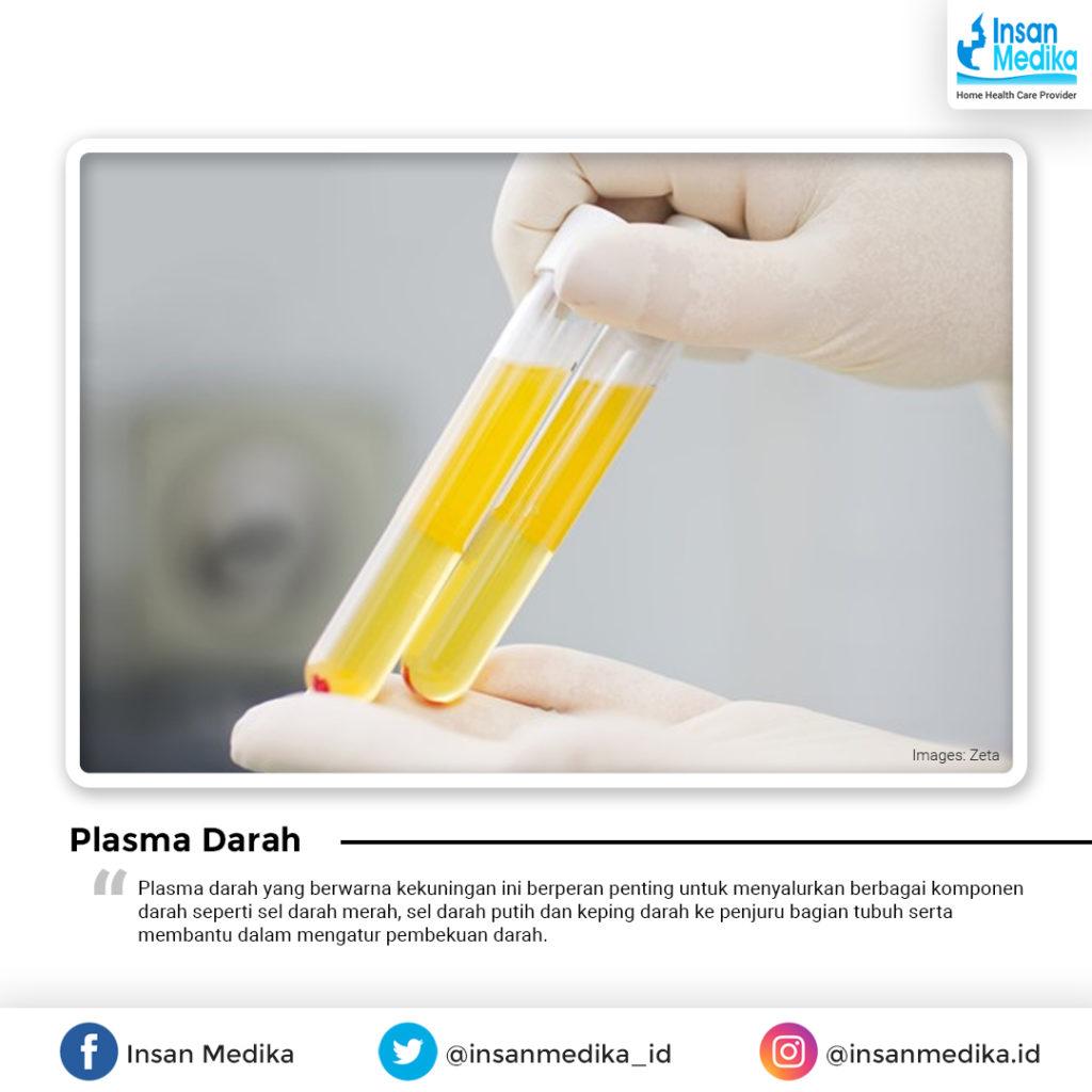 Fungsi Plasma darah bagi tubuh manusia
