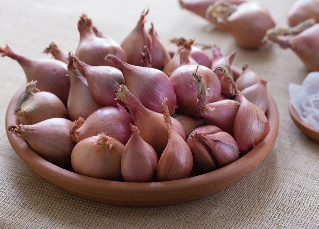Bawang merah untuk obat alami yang ada di dapur
