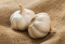Segudang Manfaat dari bawang putih