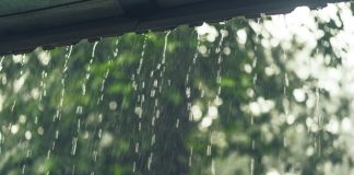 kenali ciri - ciri penyakit saat musim hujan